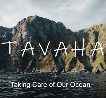 Tavaha